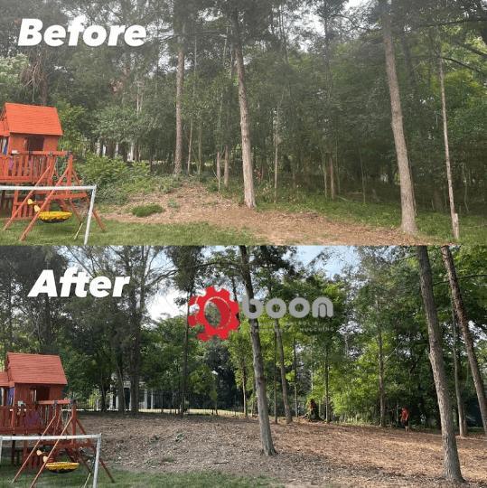 Forestry Mulching 17