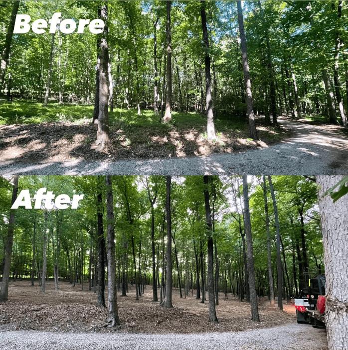 Forestry Mulching 21
